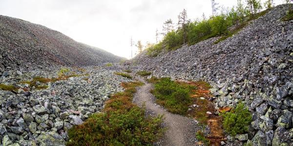 Gorge Kellostapulinkuru in Fell Yllästunturi