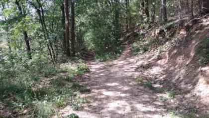 Bild 19 - recht halten, bester Trail in Bruchsal