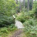 Schöne Waldpfade auf dem nördlichen Teil der Wanderung