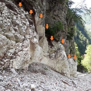 Übeltal: Blick talauswärts entlang der Abrisskante des ehemaligen Talbodens (18.8.2019)