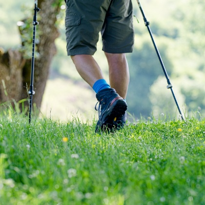 Wandern durch Wald und Wiesen (c) TV Region OberGraz-Mias PhotoArt