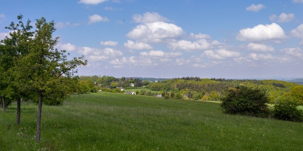 Blick Bad Münstereifel Wald