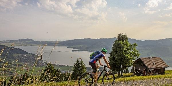 Traumhaufte Aussicht auf den grössten Stausee der Schweiz.