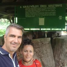 800 éves Gesztenyefa. Màrmint ami megmaradt belőle