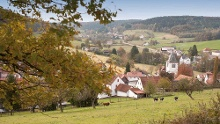 """Mossautal: Drachenweg """"Saphira"""" - Waldreich um Ober-Mossau"""