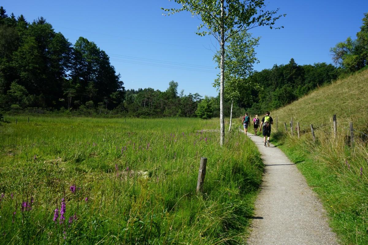 Wandern in der Eggstätt-Hemhofer Seenplatte
