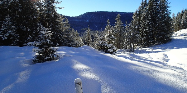 Schneeschuhtour Schlierengrat Wegmarkierung