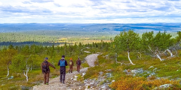 Way back from Fell Pyhäkero offers wide open landscapes along easy path