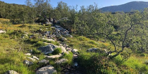 Aufstieg über Steinstufen