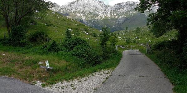 Vor dem Parkplatz auf der Alm Kuhinja gibt es eine Abzweigung nach Mrzli vrh