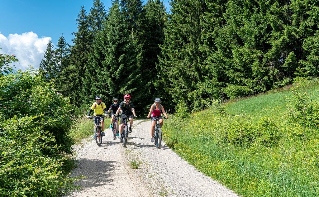 Mit dem Bike durchs Allgäuer Voralpenland - @ Autor: Kathi Goldstein - © Quelle: Pfronten Tourismus