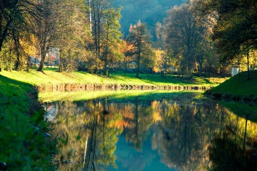 Blick in den Schwarzwald