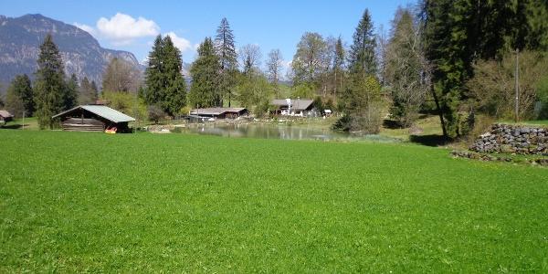 Kochelberg