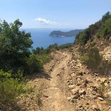 Downhill - eine sehr leichte Stelle.