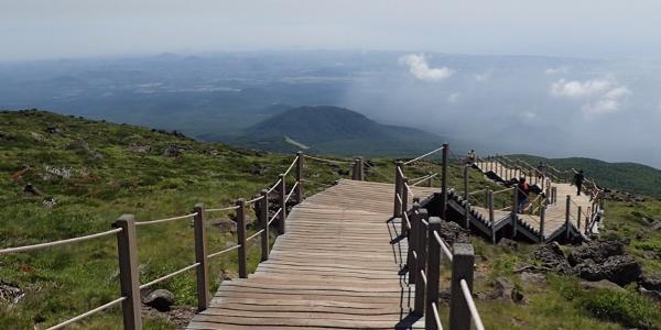 Boardwalk near the summit