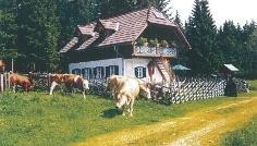 Waldtonihütte