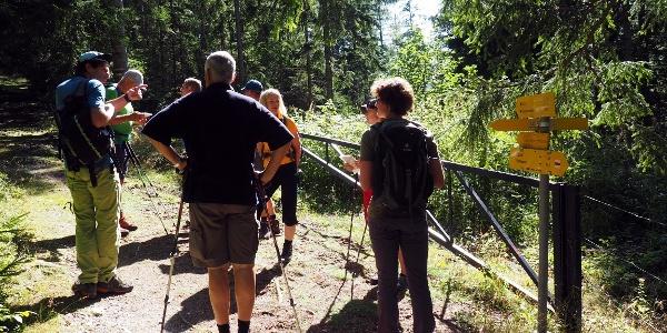 1000m, Tor an der Forststr., links ab