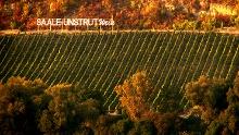 Saale-Wein-Wanderweg - Von Naumburg über Bad Kösen zurück nach Naumburg