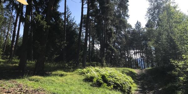 Kurzer Trail nach Karrösten