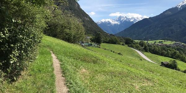 Vom Trail Blick zum Acherkogel
