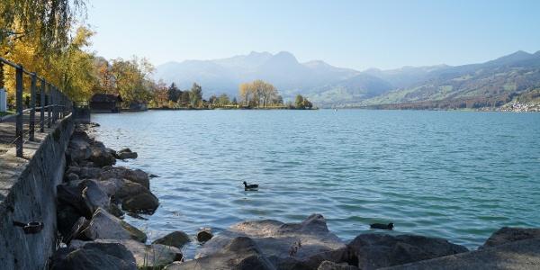 Seeweg Sachseln mit Aussicht über den See Richtung Giswil