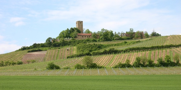Burg Ravensburg