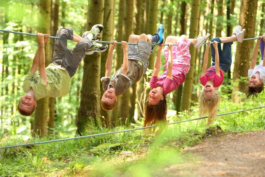 Wald- und Erlebnispfad Bächlewald