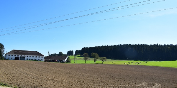 Bauernhof bei Heinrichschlag
