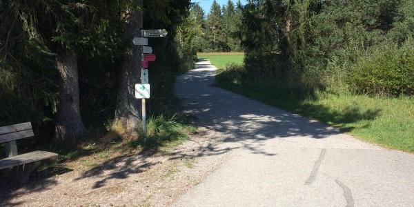 Wegweisung Richtung Wald