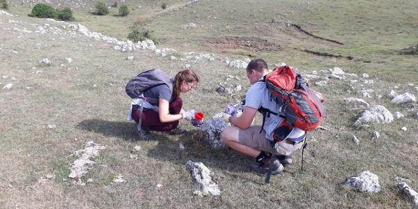 Trail marking