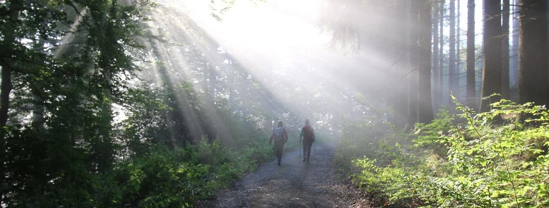 Wandere im Zwielicht Via Adrina
