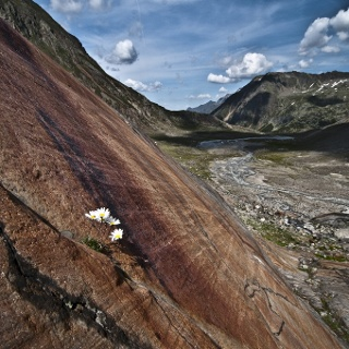 Gletscherschliff oberhalb der Sulzenauhütte