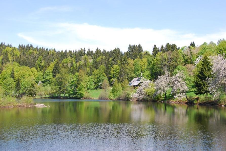 Dachsberg-Ibach: Schluchtensteig Schwarzwald, 5. Etappe