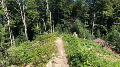 Buchberg - Highline Trail