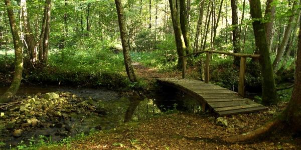 Bridge on The Grabnarca Waterside Nature Trail
