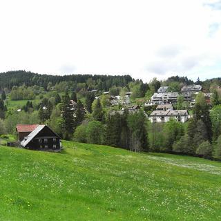 Falkau
