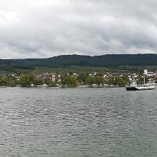 Rheinfähre Ingelheim - Östrich-Winkel