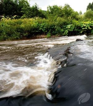 Stromschnelle der Our (Foto: Raymond Clement, Quelle: Zweckverband Naturpark Südeifel)