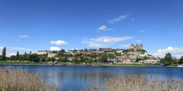 Blick auf Breisach von der Rheininsel