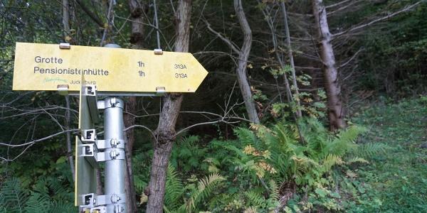 Zuerst dem Wanderweg 313A folgen bis auf einen Schotterweg