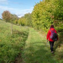 Wanderweg bei Holzfeld