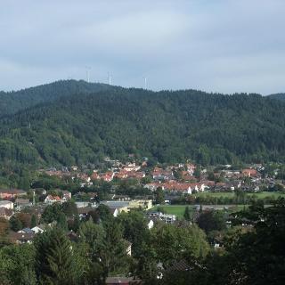 Blick über Littenweiler