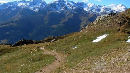 Monte Viso 3645 m, Cevedale 3769 m
