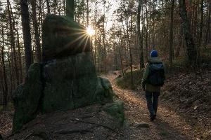 Foto Wanderweg am Lilienstein