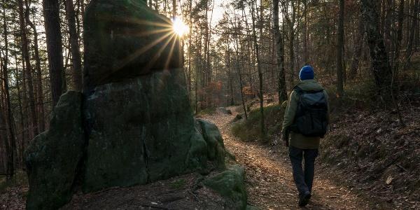 Wanderweg am Lilienstein