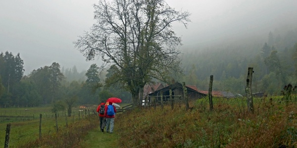 Forststation