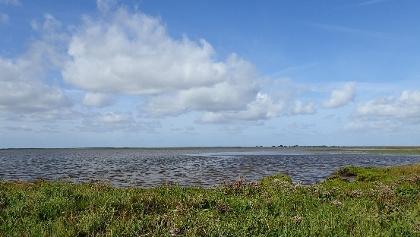 Wattflächen und Salzwiesen charakterisieren die Salzwasserlagune.