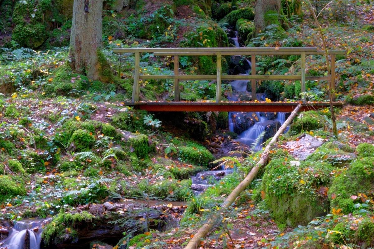 Steg im Ramsteiner Loch