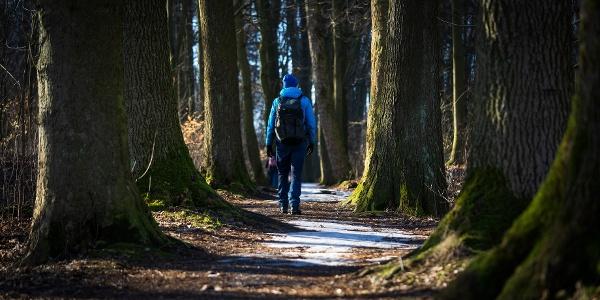 Promenadenweg (Winterwanderroute 28 Götzinger Höhe)
