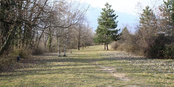 Die Wanderung beginnt in der Naherholungszone, wo dem Trudner Bach entlang aufgestiegen wird.